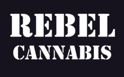 Rebel Cannabis Marketing SEO Advertising Branding