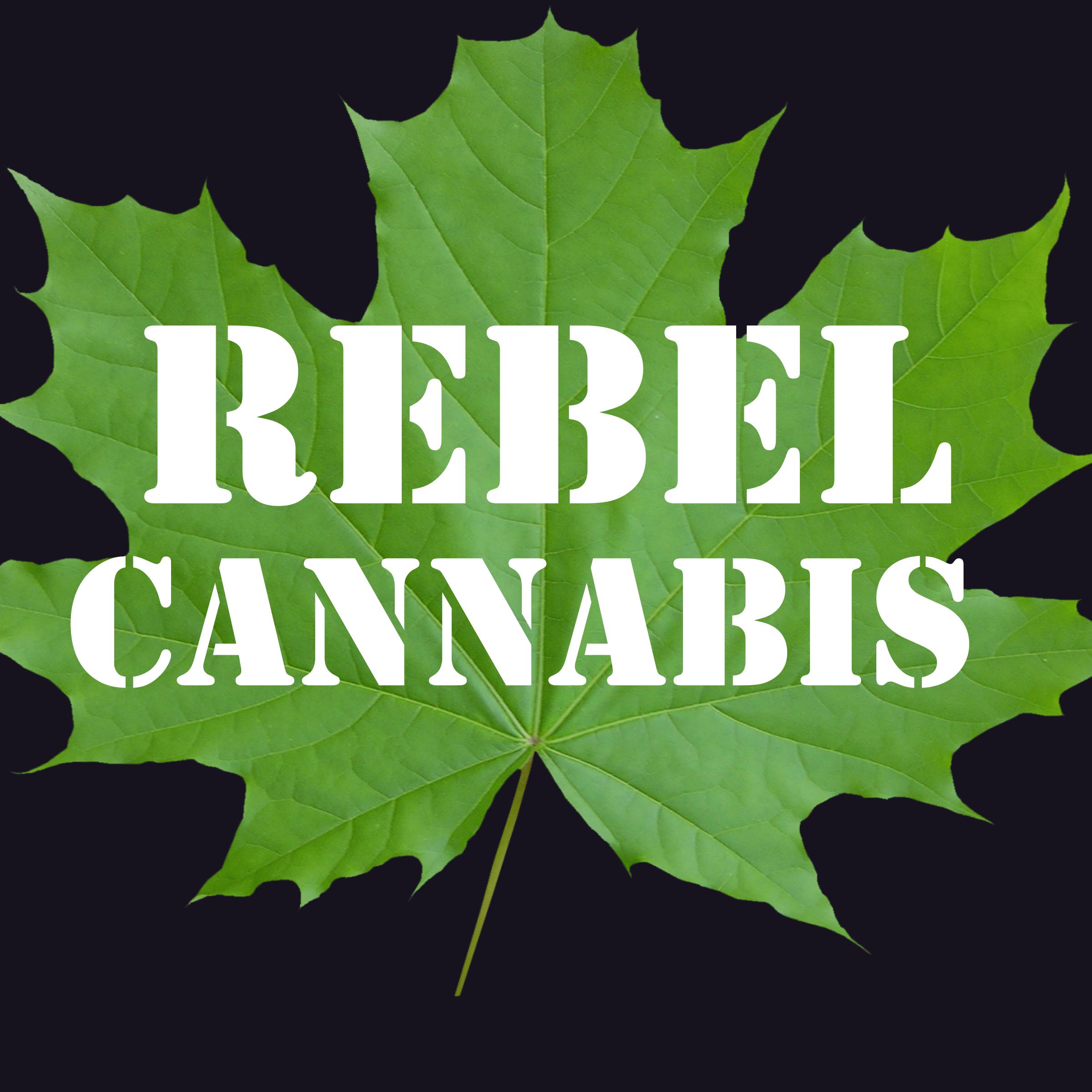 Cannabis dispensary marketing and advertising
