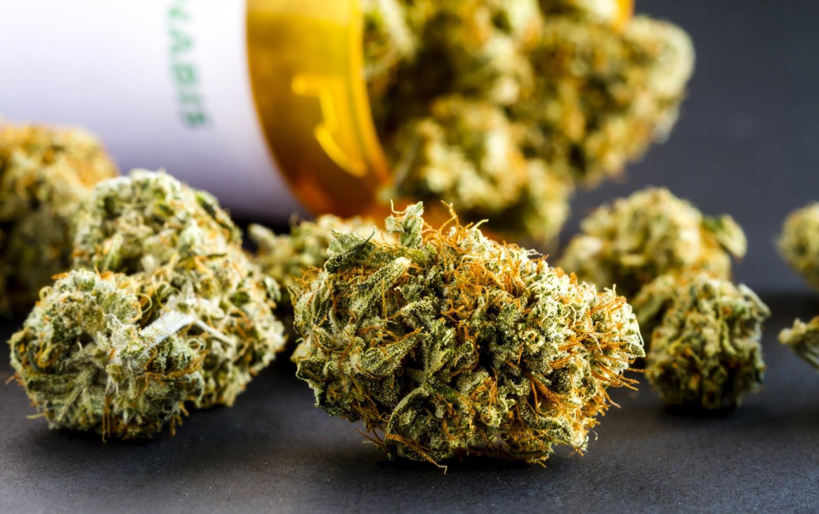 EU-GMP Certified Cannabis